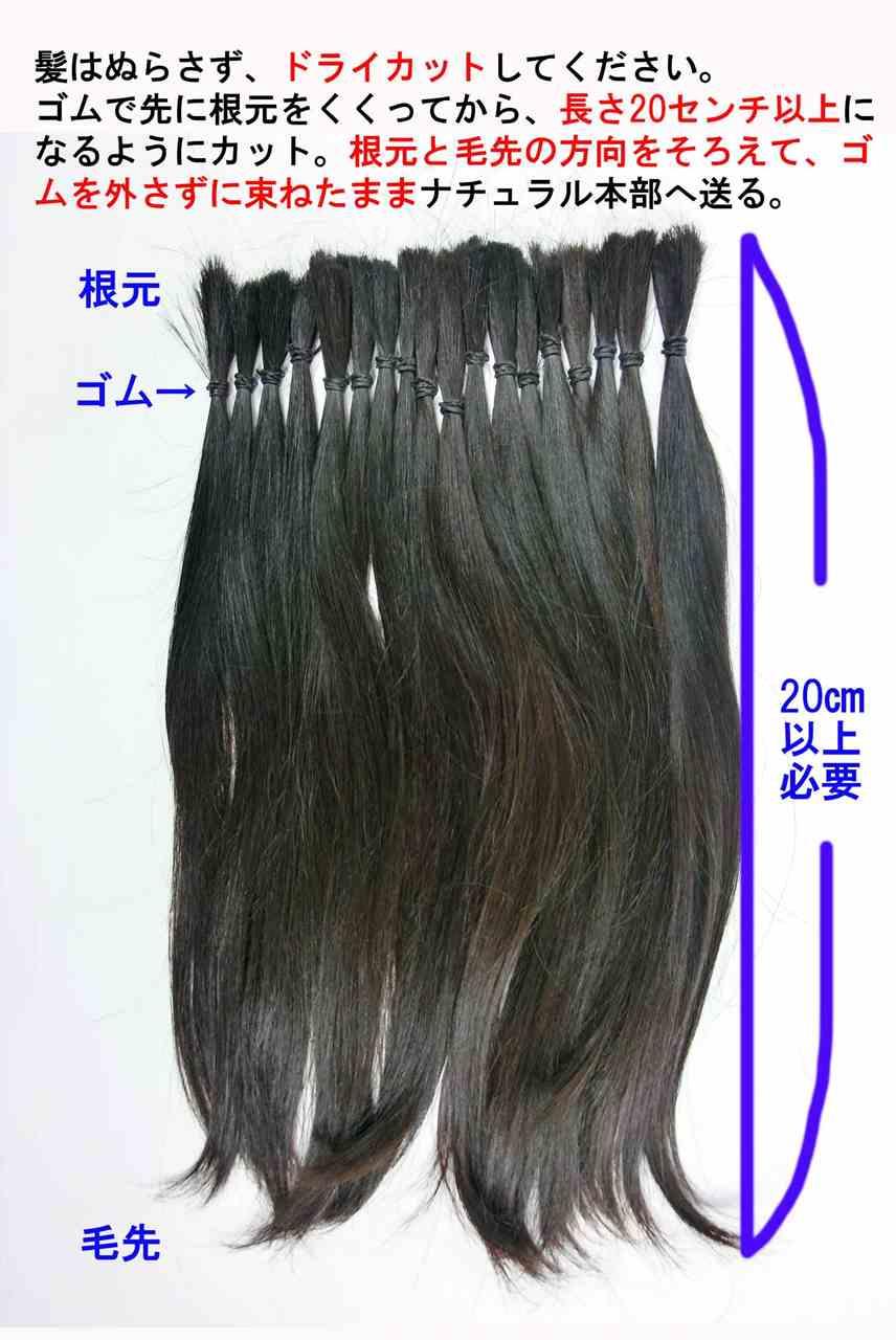 自毛で作るウィッグの自毛のカット方法